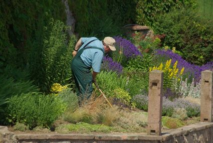 Landscaping and groundskeeping workers