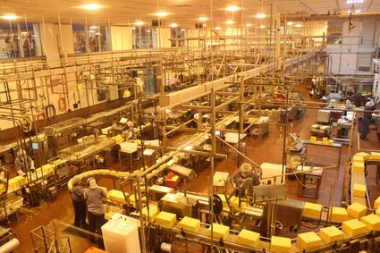 Food processing workers, all other